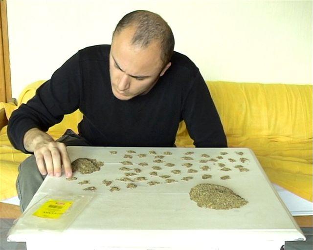 Ovidiu Anton-counting 100g of Cumin