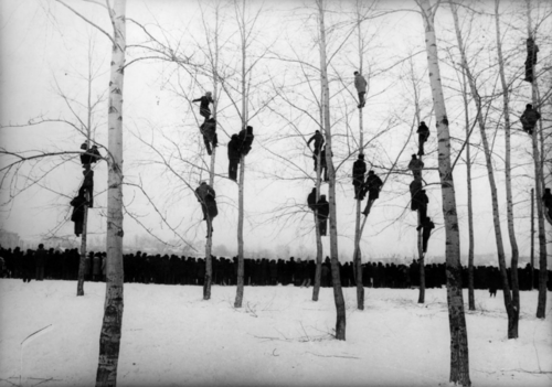 people in trees mikola gnisyuk 1964