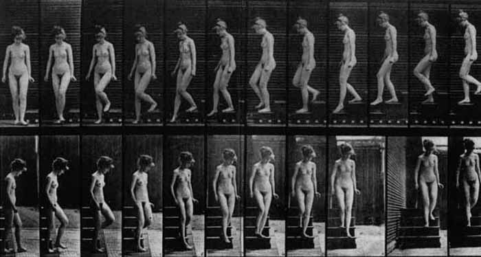Eadweard MUYBRIDGE, Descendind Stairs and Turning Around, Animal Locomotion, 1887