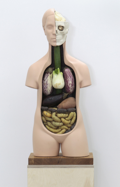 Klaus Weber Veggieanatomy, 2011 Vegetables, jesmonite, paint, wood