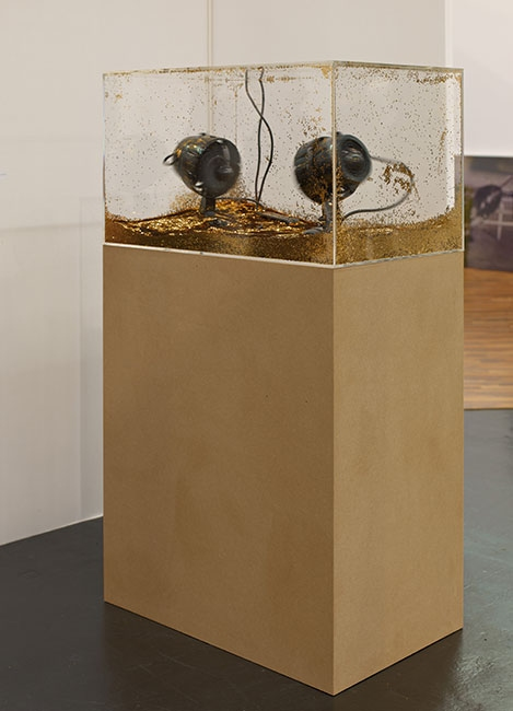 """Luka Fineisen, """"Many Particle System,"""" 2012"""
