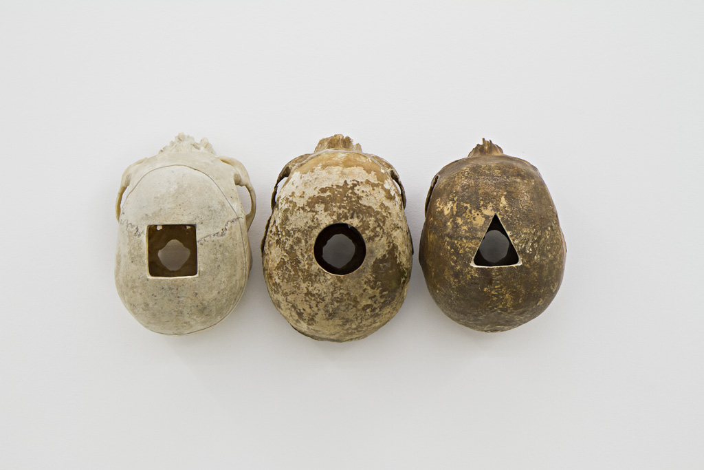 Magnus Wallin Method, 2011, 3 human skulls