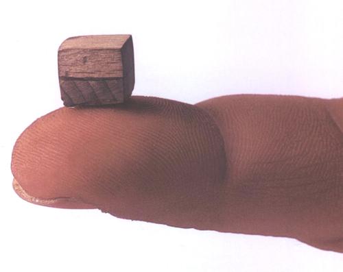 cildo_meireles_Southern Cross (1969-70) oak and pine cube