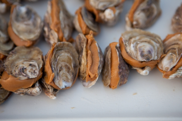 darren bader_oysters and_with peanut butter2013