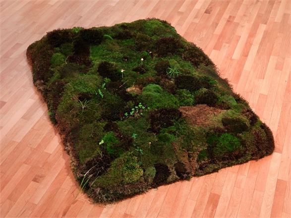 Meg Webster, Moss Bed, 1986-1988