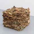Wiebke Groesch_Frank Metzger, Untitled, 2014, Fig leaves