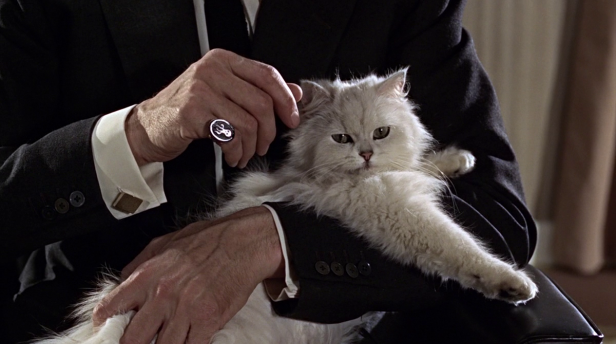 blofeld-james-bond-cat