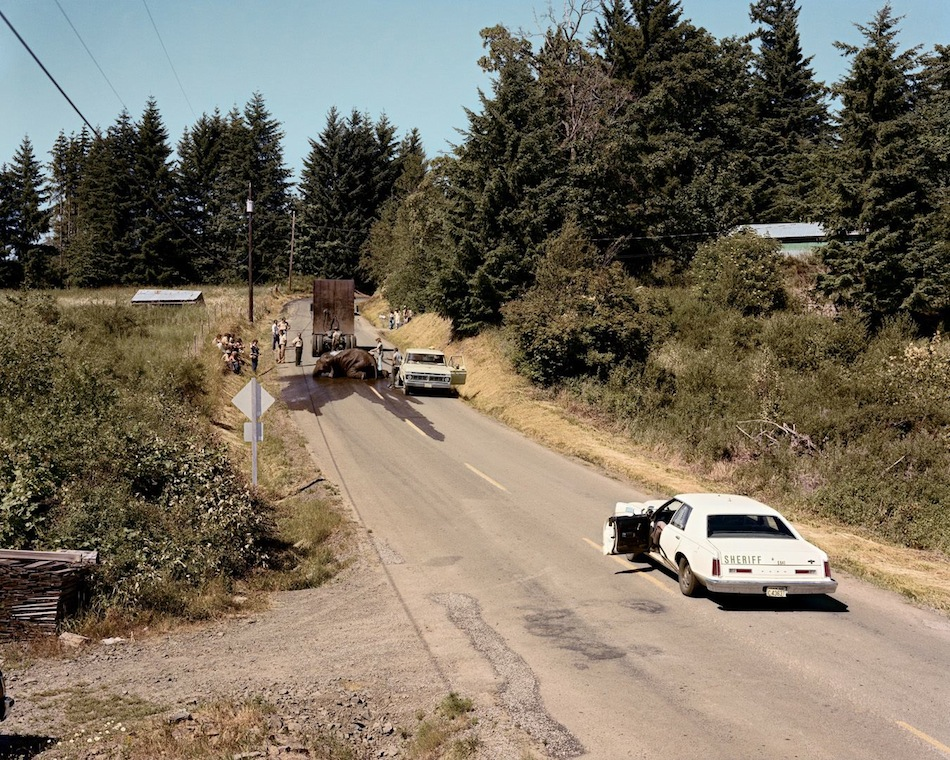Joel Sternfeld 'Exhausted Renegade Elephant', Woodland, Washington, 1982