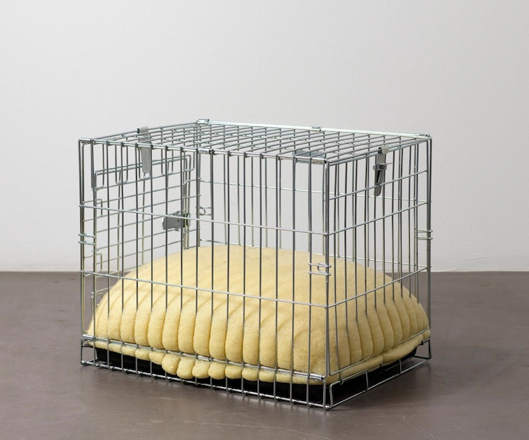 David Shrigley Pet Carrier #5 (2007)